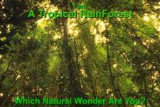 Which natural wonder are you?