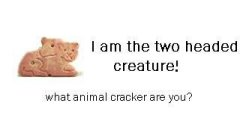 What animal cracker are you?